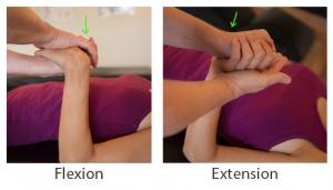 Label_Flexion & Extension