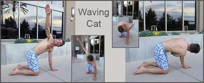 Waving Cat-3