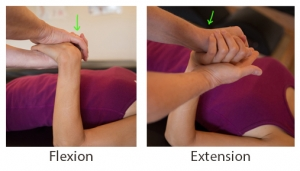 Label_Flexion & Extension