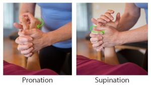Label_Pronation & Supination