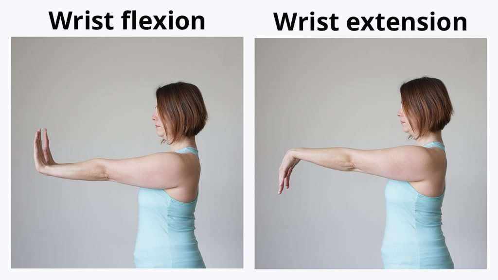 Wrist Flexion & Extension